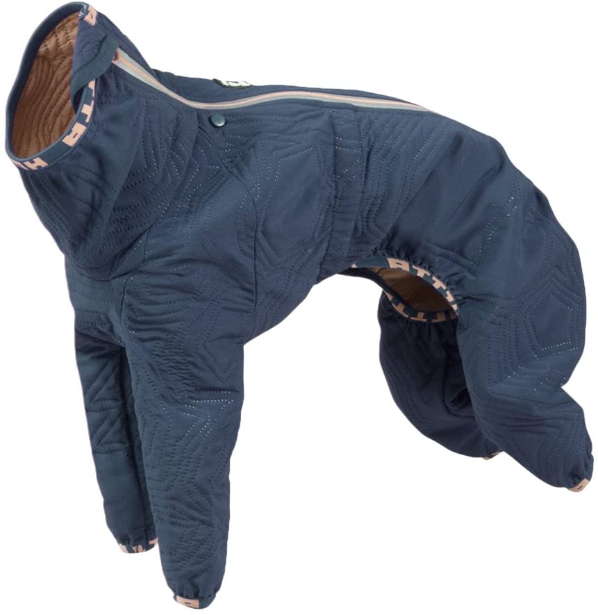 Best Dog Coats For Your Pet Ipetcompanion